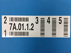 Multi-label horizontal